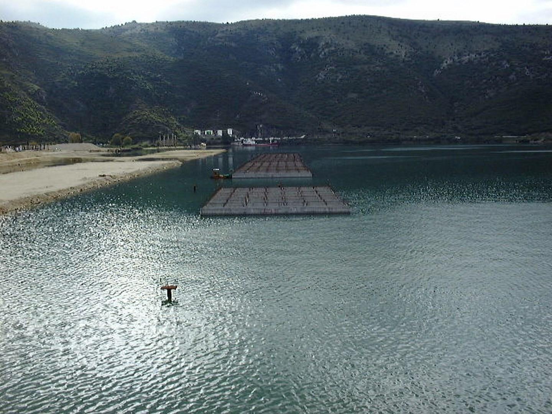 Cajones Puerto de Igoumenitsa